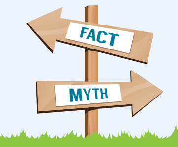 There are many myths floating around about memory foam