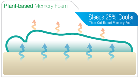 Amerisleep compared to Sealy Optimum Mattress